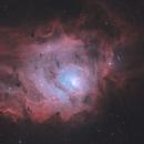 M8 Lagoon Nebula,                                Kathy Walker