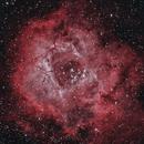 Rosette Nebula HOO,                                Brian Poole