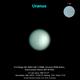 Uranus 2019-11-14 north up orientation,                                Niall MacNeill