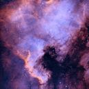 North America Nebula,                                Rich Sky