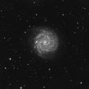 NGC 3184,                                Roberto Marinoni