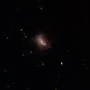 NGC 4214,                                Joel Brewer