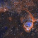 IC1795 - Nébuleuse de la tête de poisson,                                Ludovic