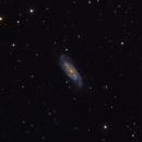 NGC3198,                                Scott Tucker