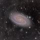 M81 HaLRGB,                                Brendan Walsh