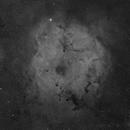 IC 1396, Elephant's Trunk nebula, 4 panel mosaic,                                rflinn68