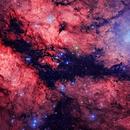 IC 1318 HaRGB,                                Oliver Czernetz