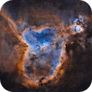 The Heart Nebula (Hubble Palette),                                Will Czaja
