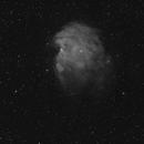 NGC2174 Monkey Head,                                Jeff Kraehnke