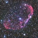 NGC6888 - The Crescent Nebula,                                Randy Roy