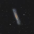 NGC 3628 The Hamburger Galaxi,                                Marc Verhoeven