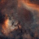 La nebulosa NGC 7822 in Hubble Palette,                                gagba