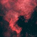 NGC7000 - North America Nebula,                                Thierry Hergault
