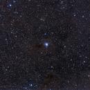 NGC7023 (Iris) and surrounding region,                                Bill Mark