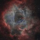 NGC 2237 - Rosette Nebula - V1,                                  VuurEnVlam