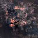 Heart of Cygnus mosaic in SHORVB,                                Ysty