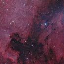 North America and Pelican Nebulae,                                Ron