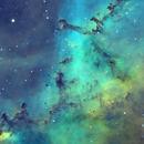Rosette Nebula - combined data image,                                Barczynski
