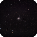 M101,                                Mark Minor
