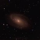 M81 crop,                                rkayakr