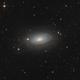 M63 / NGC 5055 - Sunflower Galaxy,                                Falk Schiel