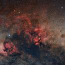 Cygnus 2021,                                Łukasz Żak