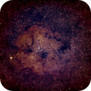 IC 1396,                                Marco Henrich
