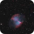 Dumbbell Nebula (M27),                                Kevin Whiteside