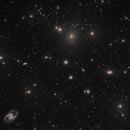 Fornax Galaxy Cluster,                                Djt