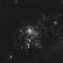 Tarantula Nebula NGC 2070 Ha,                                kribba
