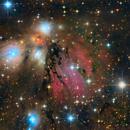 The Angel Nebula NGC2170,                                DaveMoulton