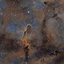 IC1396 Elephant trunk,                                Jan Veleba