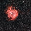 Rosetta Nebulla  NGC 2237,                                Maxou034