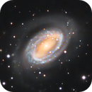NGC 4725 and 4747 in Coma Berenices,                                Alex Pinkin