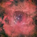 Rosette Nebula - Ngc2244 HaRVB,                                regis83