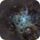 NGC 2070 - The Tarantula Nebula in Narrow Band Mapped Using The HST Pallet,                                Fernando