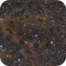 LBN 468 & GM 1-29 Gyulbudaghian's Nebula,                                  Bernhard Zimmermann