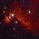 Orionnebel und Pferdekopfnebel,                                Olaf Fritsche