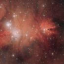 NGC2264 Cone Nebula  aka Christmas Tree Nebula,                                Caddis68