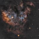 NGC 7822,                                NelsonAstrofoto