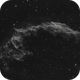 NGC 6995/6992 - IC 1340 - Eastern Veil (Ha),                                Falk Schiel