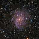 Seahorse Nebula & Fireworks Galaxy,                                Yokoyama kasuak