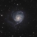 M101 in LHaRGB,                                Sergey Trudolyubov