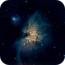 Orion Nebula,                                Rich Bamford