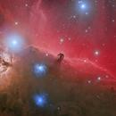 The Colorful Horsehead Nebula in HaSII-RGB,                                Trần Hạ