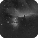 Horsehead Nebula - IC434,                                NewfieStargazer