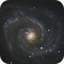Whirlpool Galaxy - M51,                                Didier Walliang