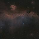 Seagull Nebula IC 2177,                                Robert Huerbsch