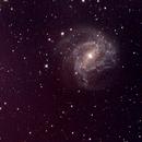 Southern Pinwheel Galaxy (M83),                                Chris Ryan