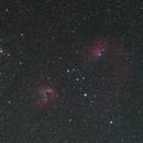 Flaming Star Nebula,                                astro.tom
